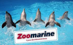 zoomarine attrazioni pomezia