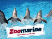 zoomarine-istituzionale